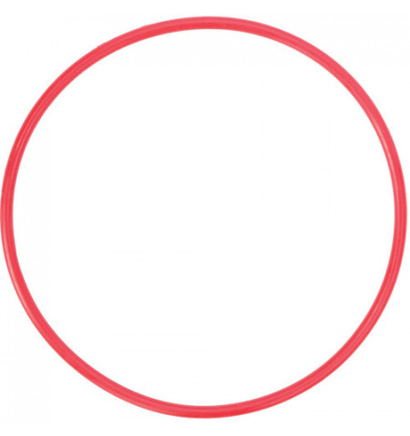 Olympus Anel POL-054 O-ring PT-EP12 Lens (V6370520W000)