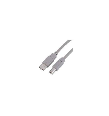 USB V.2.0 TIPO A-B 5M