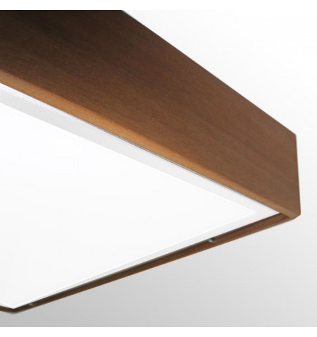 BOXLED IPE panel 60x60cm