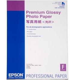 Papel Epson C13S042091