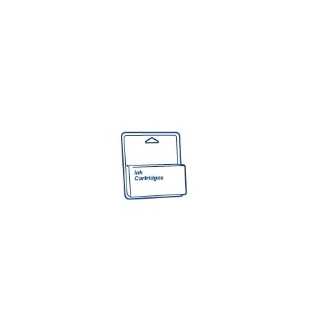 Tinteiro Original Epson Stylus Pro 4800/4880 Cinzento C13T605700