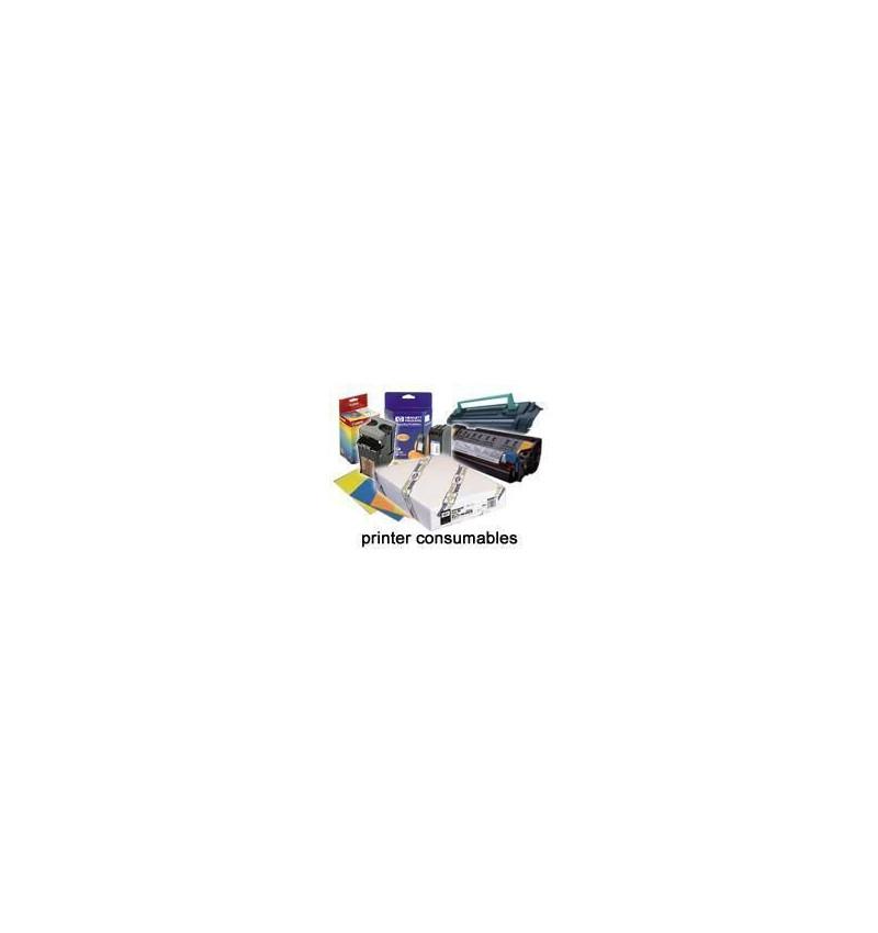 Papel Epson C13S041703