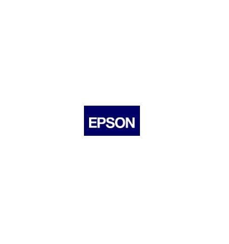 Unidade de Manutenção Original Epson WF-100W (C13T295000)