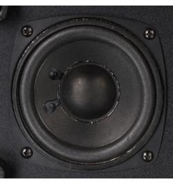 Colunas 2.1 Microlab M113 24W RMS - Pretas