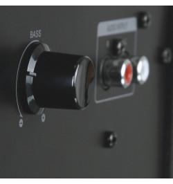 Colunas 2.1 Microlab M700 40W RMS - Pretas